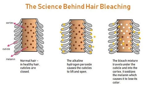 how to bleach hair at home with the easiest way.