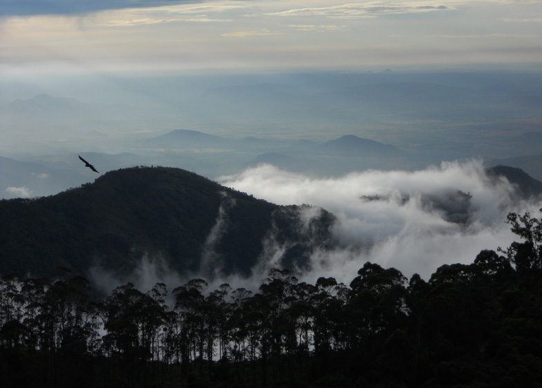 best place to party in India is kodaikanal