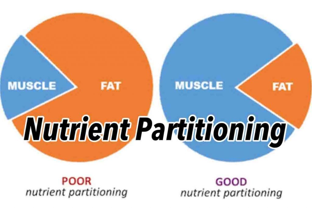 Nutrient Re partitioning