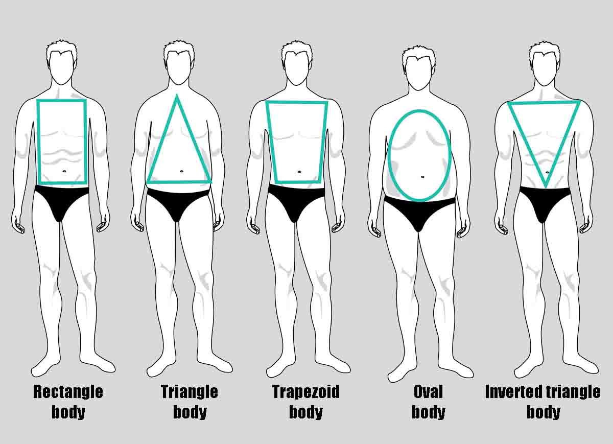 different male body types