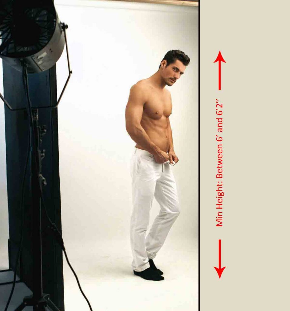 How tall should you be to become a male model