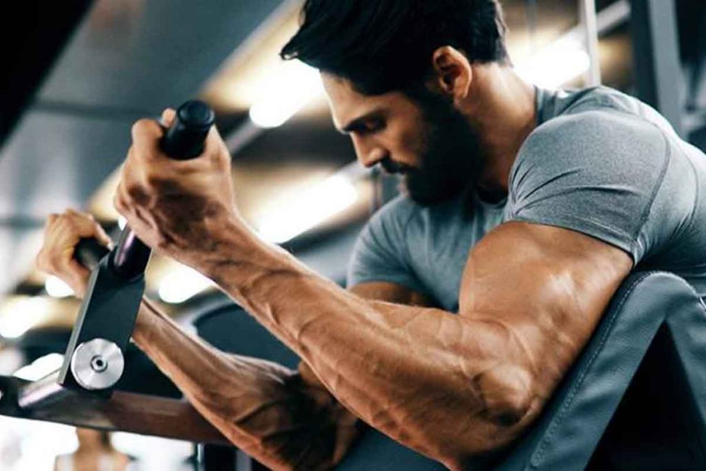 How whey protein helps to build muscles