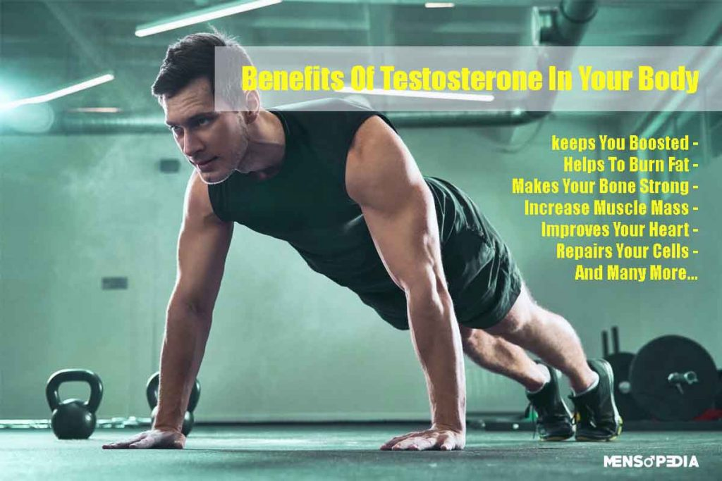 What are the benefits of Testosterone in our body