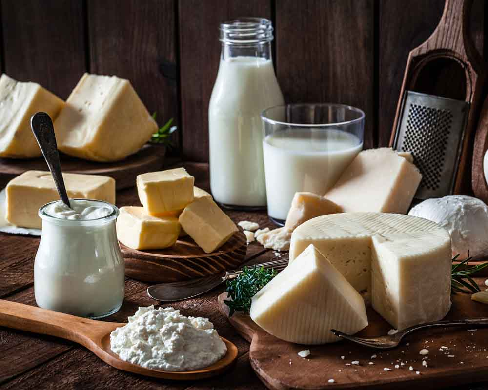 Excessive Consumption Of Dairy Products Can Reduce Male Testosterone Levels