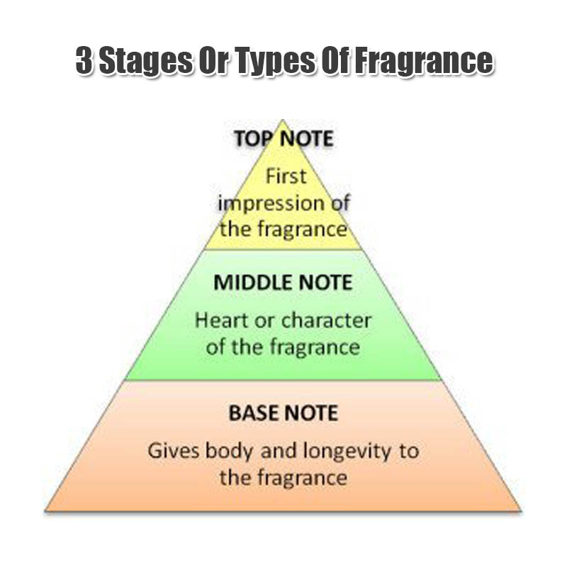 3 stages or types of any fragrance