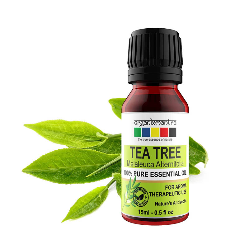 Best tea tree oil for forehead acne