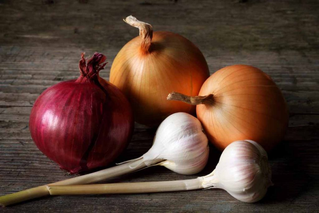 Eating Onions And Garlic Cause Bad Breath