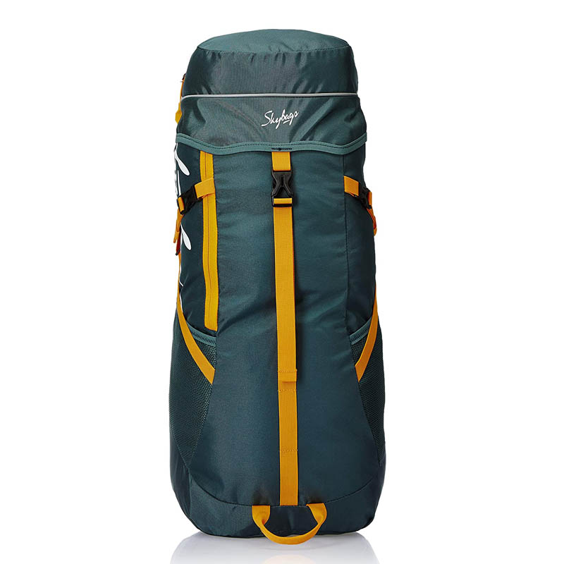 best travel backpacks for hiking  - Skybags Sonic 49 Ltrs Green Rucksack