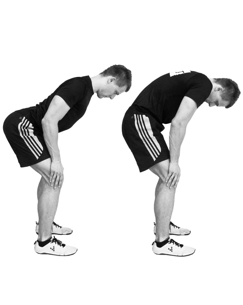 Standing cat cow yoga relieves from lower back pain in men