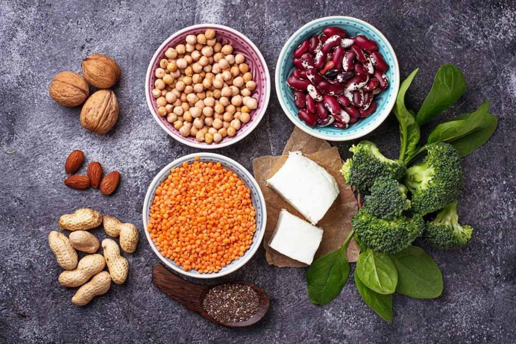 Best Vegetarian Protein sources for Indians