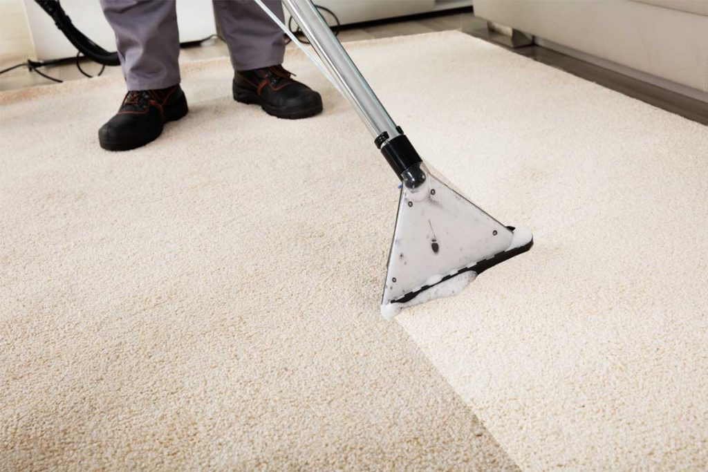 How To Remove Cum Stain From Carpet