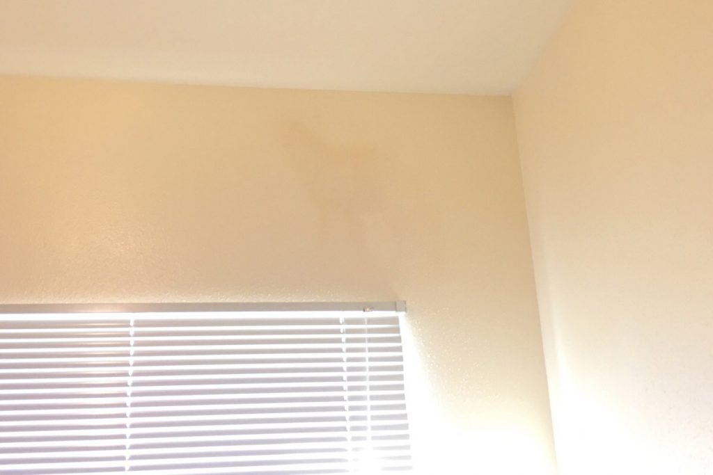 How To Remove Cum Stain From Wall