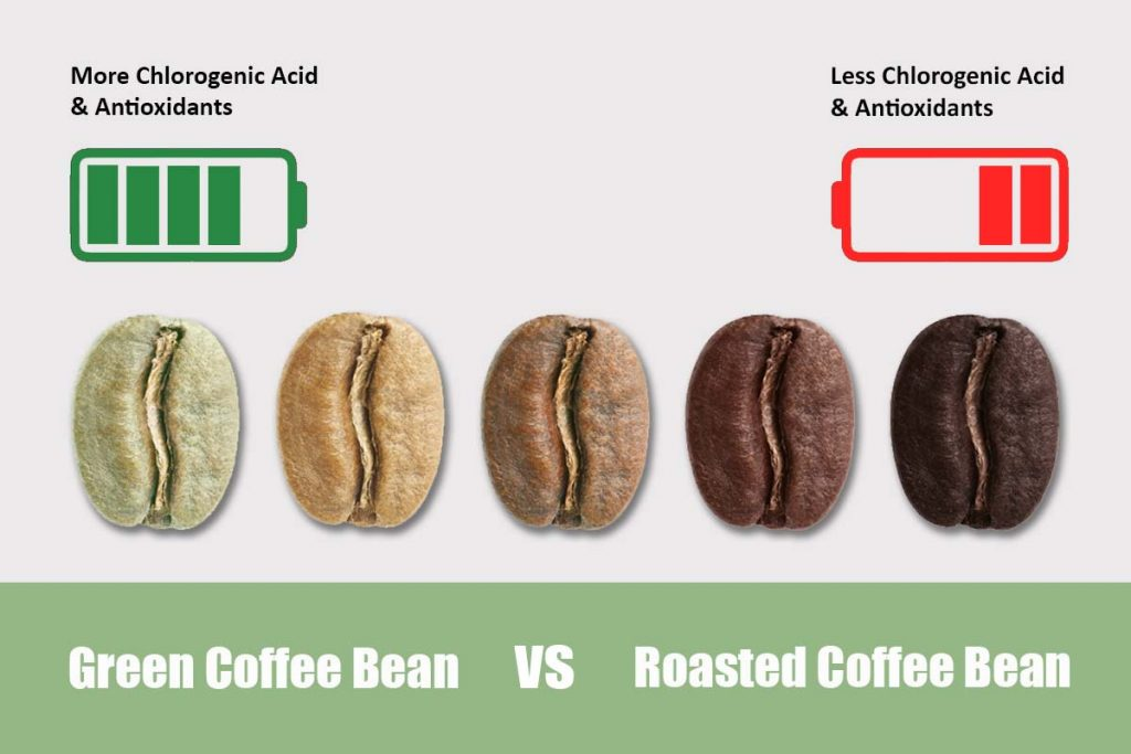 Why Green Coffee Is Better Than Black Coffee For Weight Loss